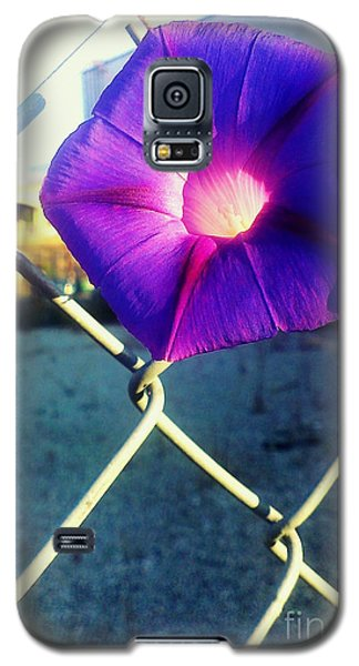 Galaxy S5 Case featuring the photograph Chained Splendor by James Aiken