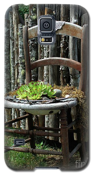 Galaxy S5 Case featuring the photograph Chair Planter by Ron Roberts