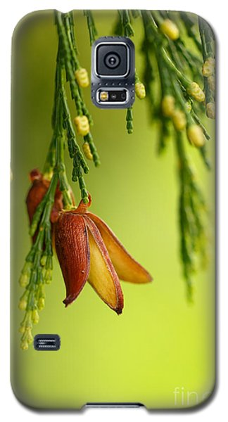 Changes Galaxy S5 Case