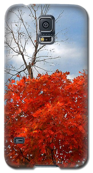 Galaxy S5 Case featuring the photograph Changing When The Time Is Right by Lena Wilhite