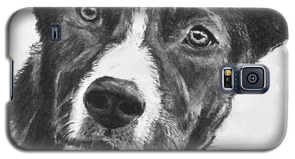 Charcoal Dog Shepherd Galaxy S5 Case