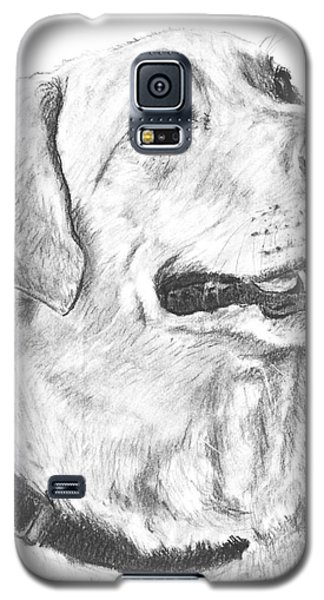 Charcoal Drawing Yellow Lab In Profile Galaxy S5 Case