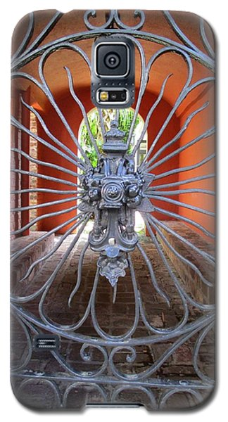 Charleston Gate 1 Galaxy S5 Case by Randall Weidner
