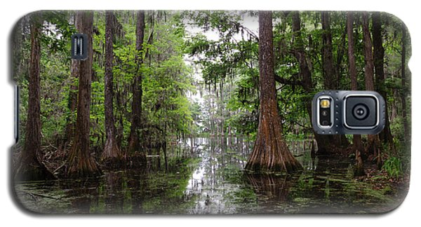 Charleston Swamp Galaxy S5 Case