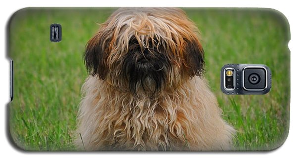 Galaxy S5 Case featuring the photograph Charlie by Greg Norrell