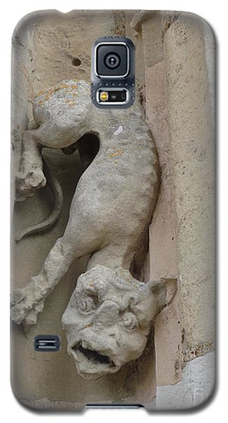 Galaxy S5 Case featuring the photograph Chartres Cathedral Dog Gargoyle by Deborah Smolinske