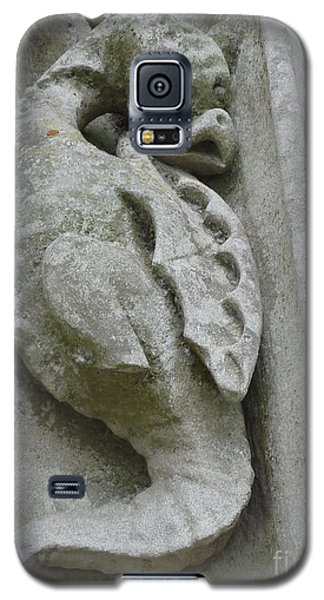 Galaxy S5 Case featuring the photograph Chartres Cathedral Dragon by Deborah Smolinske