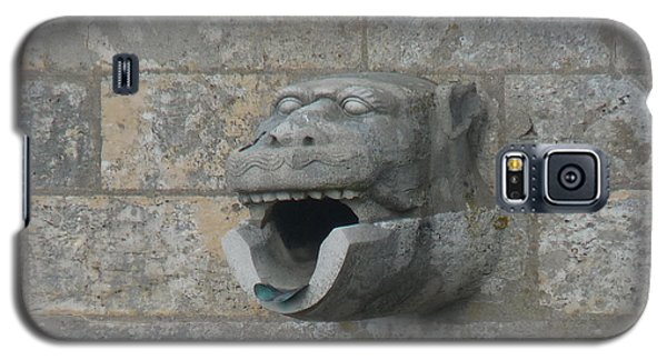 Galaxy S5 Case featuring the photograph Chartres Cathedral Gargoyle Drain by Deborah Smolinske