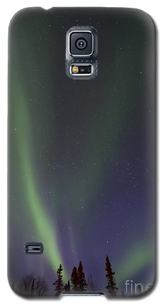 Chasing Lights Galaxy S5 Case