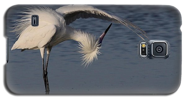 Checking For Leaks - Reddish Egret - White Form Galaxy S5 Case
