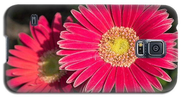 Cheerfulness Galaxy S5 Case
