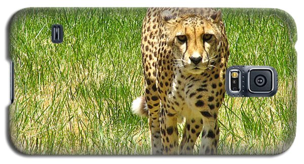 Galaxy S5 Case featuring the photograph Cheetah Approaching by CML Brown
