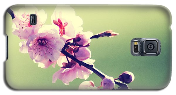 Galaxy S5 Case featuring the photograph Cherry Blooms by Yulia Kazansky