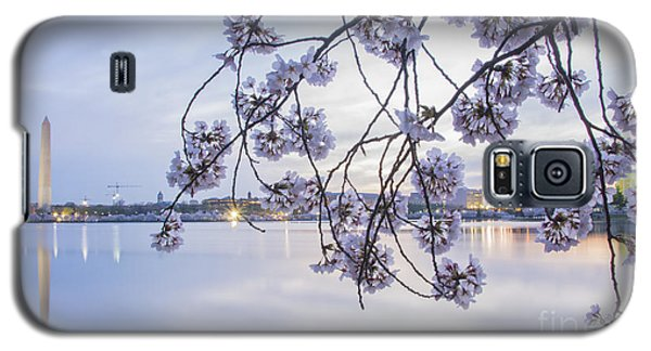 Cherry Blossom Dawning Galaxy S5 Case