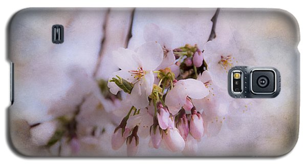 Cherry Blossom Dreams Galaxy S5 Case