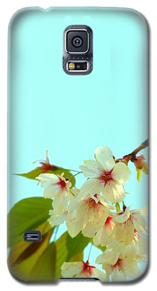 Galaxy S5 Case featuring the photograph Cherry Blossom Flowers by Rachel Mirror