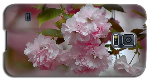 Galaxy S5 Case featuring the photograph Cherry Blossom by Sami Martin