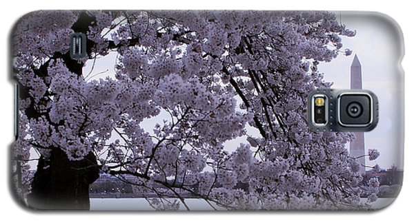 Galaxy S5 Case featuring the photograph Cherry Blossom Special by Myrna Bradshaw