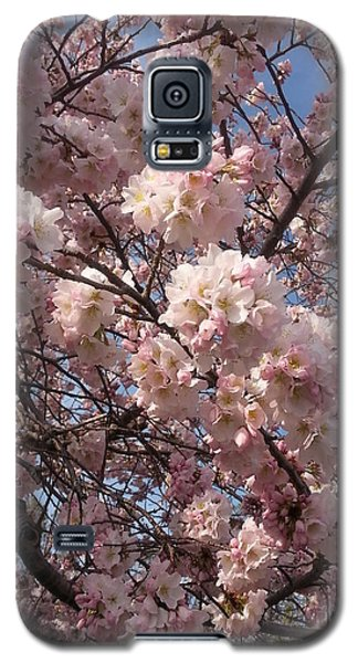 Cherry Blossoms For Lana Galaxy S5 Case by Emmy Marie Vickers
