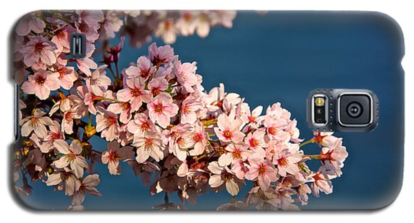 Cherry Blossoms On The Basin Galaxy S5 Case