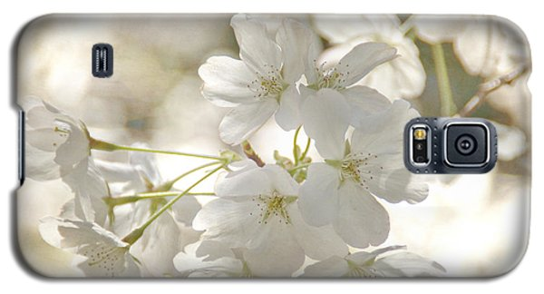 Cherry Blossoms Galaxy S5 Case by Peggy Hughes