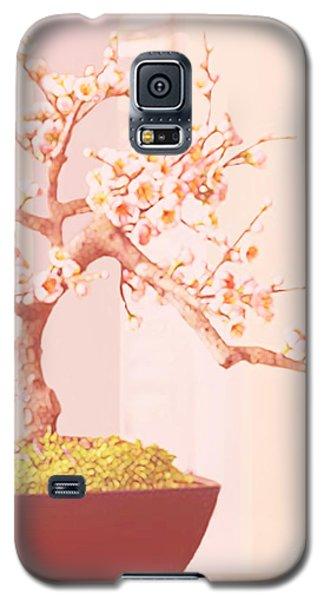 Cherry Bonsai Tree Galaxy S5 Case by Marian Cates