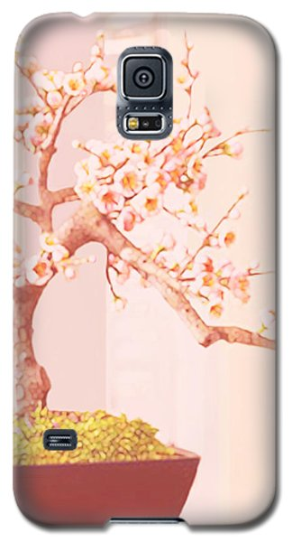 Cherry Bonsai Tree Galaxy S5 Case