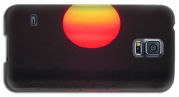 Galaxy S5 Case featuring the photograph Cherry Drop Sunrise by Dianne Cowen