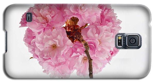 Cherry Globe Galaxy S5 Case by Sonali Gangane