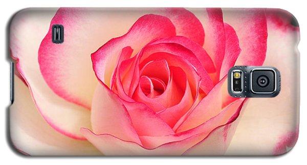 Cherry Parfait Rose Galaxy S5 Case