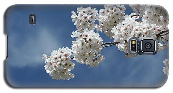 Cherry Tree Galaxy S5 Case