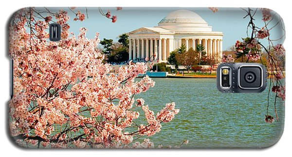 Cherry Trees At The Jefferson Galaxy S5 Case