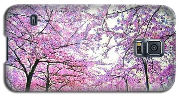 Galaxy S5 Case featuring the painting Cherry Trees In Washington Dc by Marie-Line Vasseur