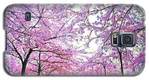 Cherry Trees In Washington Dc Galaxy S5 Case