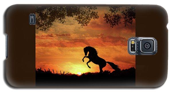Chestnut Sunset Galaxy S5 Case