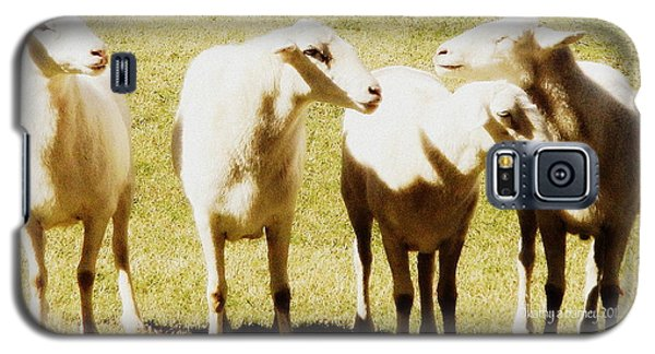 Galaxy S5 Case featuring the photograph Cheviot Sheep by Kathy Barney