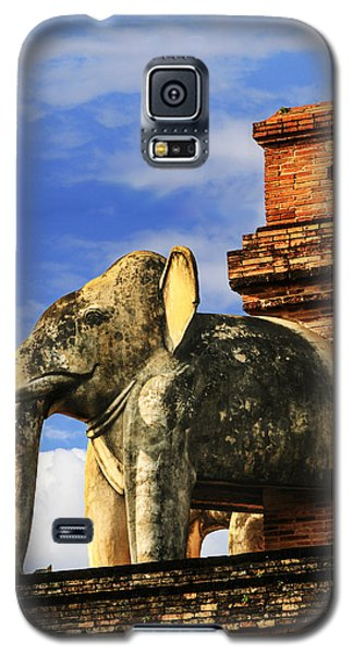 Galaxy S5 Case featuring the photograph Chiang Mai Elephant by Rob Tullis
