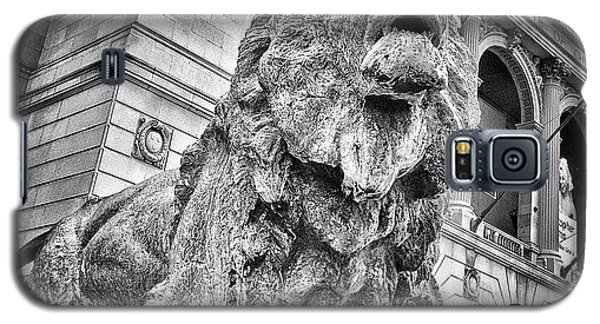 Lion Statue At Art Institute Of Chicago Galaxy S5 Case by Paul Velgos