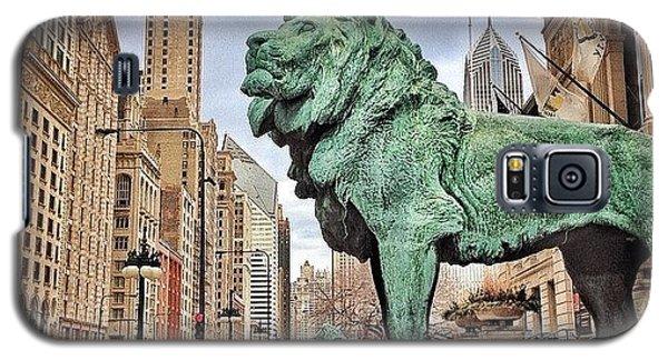 Animal Galaxy S5 Case - Chicago Art Institute Lion Statue by Paul Velgos
