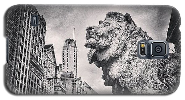 Art Institute Of Chicago Lion Picture Galaxy S5 Case