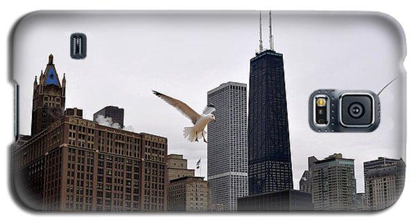 Chicago Birds 2 Galaxy S5 Case by Verana Stark