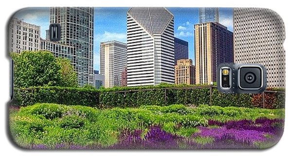 Colorful Galaxy S5 Case - Chicago Skyline At Lurie Garden by Paul Velgos