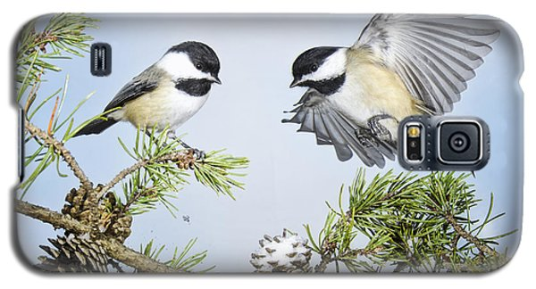 Chickadee Chums Galaxy S5 Case