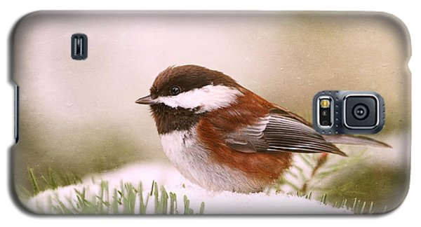Chickadee In Snow Galaxy S5 Case by Peggy Collins