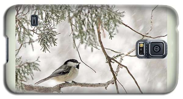 Galaxy S5 Case featuring the photograph Chickadee In Snowstorm by Paula Guttilla