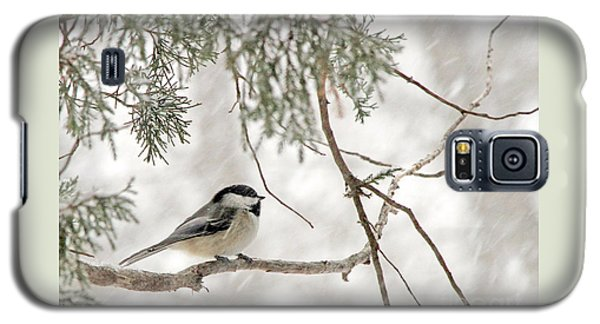 Chickadee In Snowstorm Galaxy S5 Case