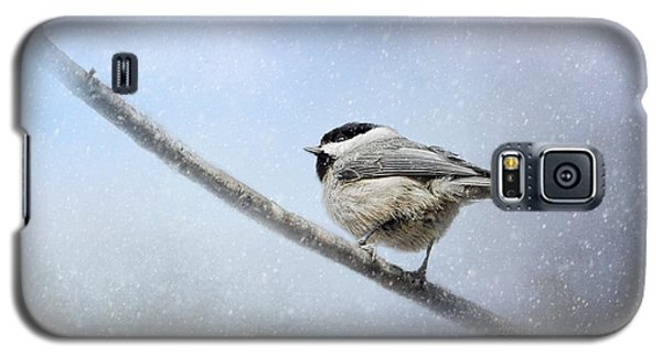 Chickadee In The Snow Galaxy S5 Case by Jai Johnson