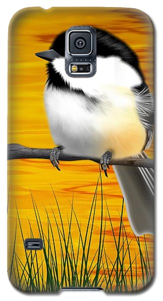 Chickadee On A Branch Galaxy S5 Case by John Wills