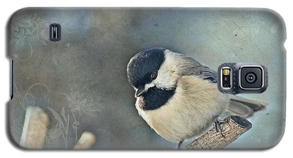 Chickadee With Texture Galaxy S5 Case