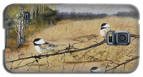 Chickadees And A Row Of Birch Trees Galaxy S5 Case